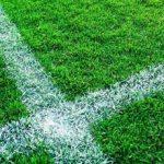 gräs fotboll
